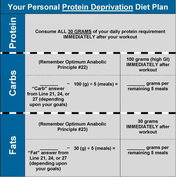 High Protein Diet Plan