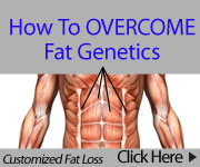 Customized Fat Loss And All Bonus Programs