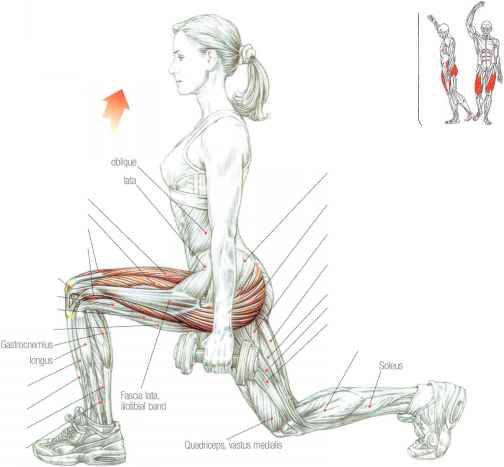 Dumbbell Lunges Muscles