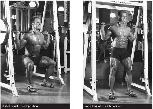 Anatomy Exercise Lying Dumbbell Curl Muscle Growth